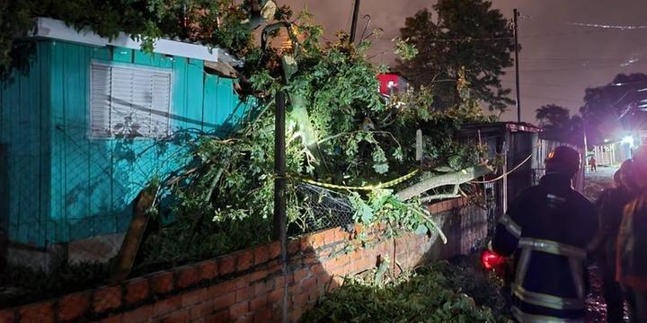 Temporal provoca destelhamentos e queda de árvores em Santa Maria e São Pedro do Sul   Foto: Renato Oliveira / Especial / CP